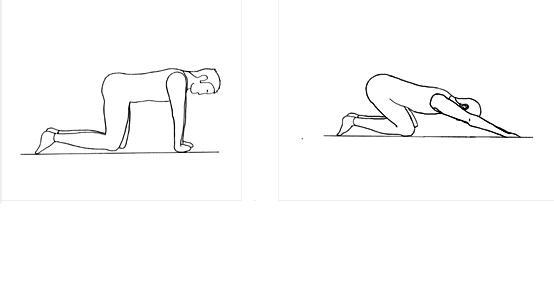 esercizi per schiena alta